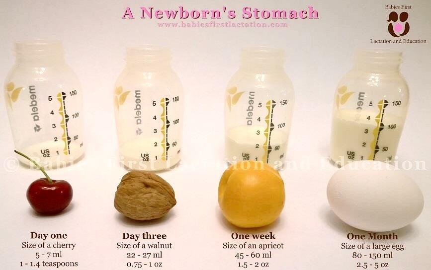 hur mycket ska en nyfödd äta